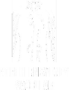 Northern Sydney Vascular